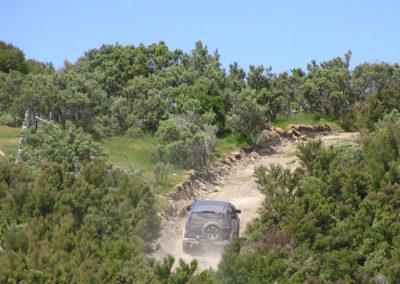 Climbing the Tora Track ridgeline